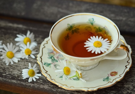 Check out GAYOT's Top 10 Green Teas