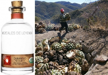 Discover some of the best bottled Mexican spirits on GAYOT's list of the Top 10 Mezcals