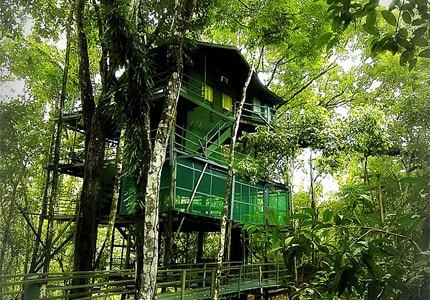 One of the tree houses at Ariau Amazon Towers Hotel