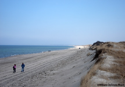 Sandy Neck Beach in Barnstable, Masachusetts