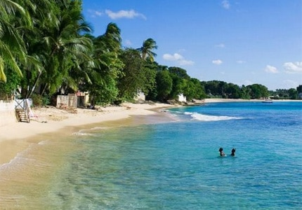 Enjoy the beautiful white sand beaches of Barbados in the Caribbean