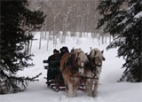 A winter sleigh ride in Aspen, Colorado