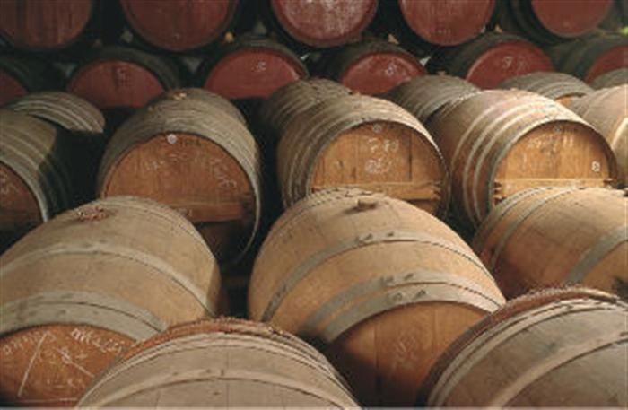 Wine barrels in the Languedoc