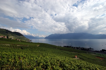 View of Lake Geneva and surrounding landscape