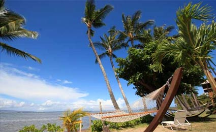 An oceanfront view from a hammock at Hotel Molokai in Hawaii