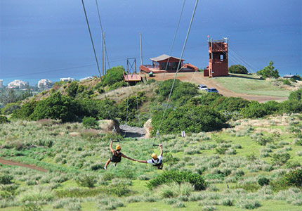 Kapalua Zipline in Maui, Hawaii, one of GAYOT's Hawaiian adventures