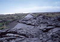 Chain of Craters Road offers one of the best views of the vast lava fields in Hawaii