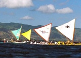 Canoe races in Hawaii