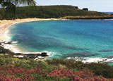 Four Seasons Resort Lanai at Manale Bay offers one of the most magnificent beaches in Hawaii