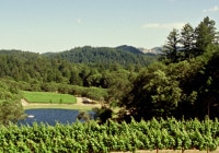 Pride Mountain Vineyards offers excellent views of Napa Valley