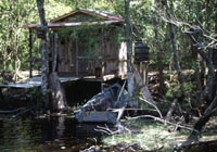 Trapper's cabin on the bayou