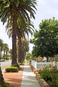 The palm tree-lined streets of Corona del Mar in Newport Beach