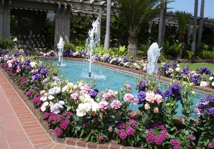 The central garden fountain at the Sherman Library & Gardens in Newport Beach, Cailfornia