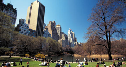 The magnificent Central Park in New York was designed by Frederick Law Olmsted