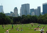 Sheep Meadow in Central Park in New York was once used for military drills