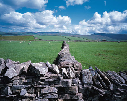 Landscape of The Dales