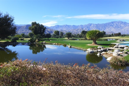 A serene and peaceful California landscape found in Palm Springs