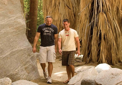 Palm Canyon is one of the top spots for a hike in Palm Springs