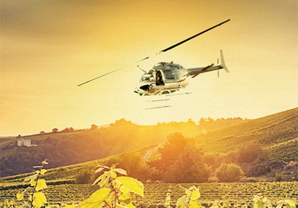 Paso Air Tours takes you on an unforgettable excursion of Paso Robles Wine Country