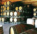 Wine barrels in Paso Robles, California