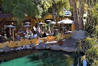 The charming duck pond at El Encanto restaurant in Cave Creek, Arizona