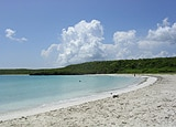 Vieques Island in Puerto Rico