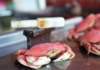 The Dungeness crab, a San Francisco favorite