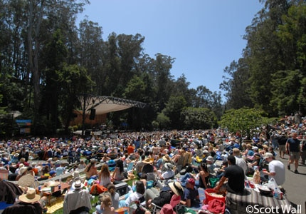 Guests enjoying entertaining performances at the Stern Grove Festival in San Francisco, California