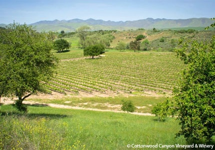 Cottonwood Canyon Vineyard & Winery in Santa Maria, California, is situated along the Foxen Canyon Wine Trail