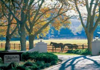Alisal Guest Ranch is a working cattle ranch in Solvang, California