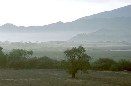 The Santa Ynez Valley is located in Santa Barbara County, California