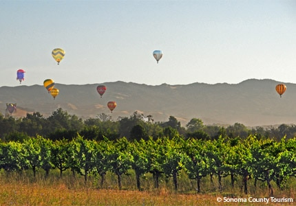 Take in the scenery of Sonoma County, California, from above on a hot air balloon
