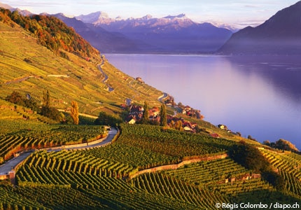 Lavaux in Switzerland, a UNESCO World Heritage Site and one of GAYOT's Top 10 Wine Routes in the World