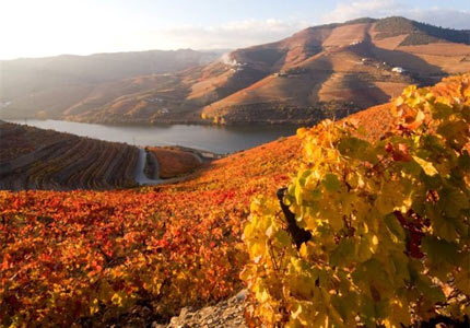 The Port Wine Route along the Douro Rover in Portugal