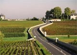 Route des Chateaux in Bordeaux, France, one of GAYOT's Top 10 Wine Routes in the World