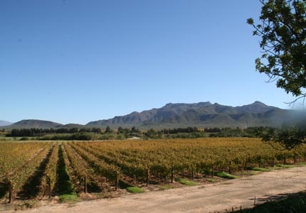 South Africa's Route 62, one of GAYOT's Top 10 Wine Routes in the World