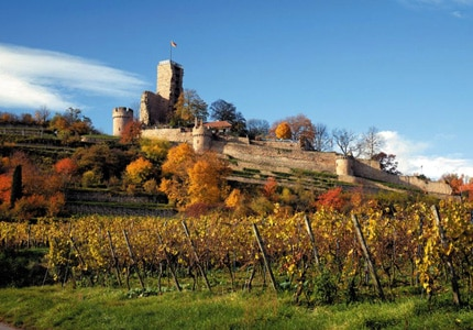 Wachtenburg Castle is located on the German Wine Route