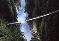 The Capilano Suspension Bridge just north of Vancouver