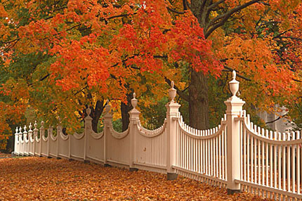 Fall foliage in all of its splendor in Old Bennington Historical District