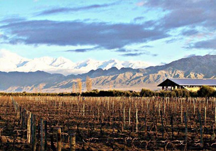 Winter time at the Achaval-Ferrer Winery in Mendoza, Argentina