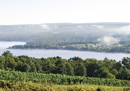 Dr. Konstantin Frank's Vineyard in the Finger Lakes region of New York offers a variety of wines