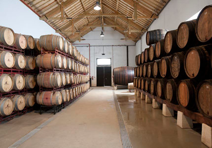 Barrels of Esporão wine at their vineyard in Portugal