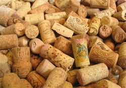Cork is sustainable and biodegradable