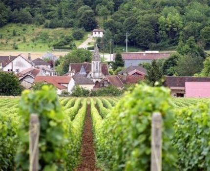 Wine country in the Champagne-Ardenne region, now designated a UNESCO World Heritage Site