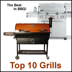 Find a grill that's right for your needs and your budget with GAYOT's Top 10 Barbecue Grills 2013