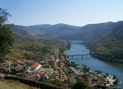 The Douro Valley, Portugal, where true Port is made
