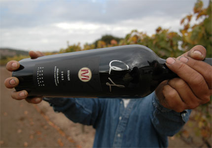Andrew Murray Vineyards in Santa Barbara County