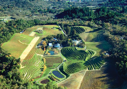 An aerial view of Benziger Family Winery