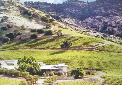 Shafer Vineyards in Napa Valley, California