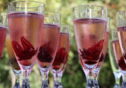 Check out GAYOT's picks for the best rosé Champagnes